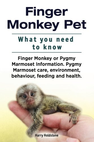 Finger Monkey Pet. WHAT YOU NEED TO KNOW. Finger Monkey or Pygmy Marmoset Information. Pygmy Marmoset care, environment, behaviour, feeding and health.