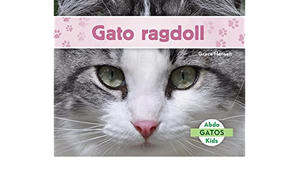 Gato Ragdoll (Ragdoll Cats) (Spanish Version) (Gatos/ Cats) (Spanish Edition): Grace Hansen: 9781532101977: Amazon.com: Books