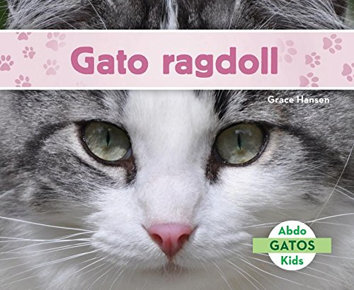 Gato Ragdoll (Ragdoll Cats) (Spanish Version) (Gatos/ Cats) (Spanish Edition) (Spanish) Library Binding – September 1, 2017