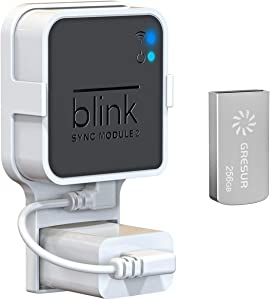256GB Blink USB Flash Drive for Local Video Storage with The Blink Sync Module 2 Mount (Blink Add-On Sync Module 2 is NOT Included)