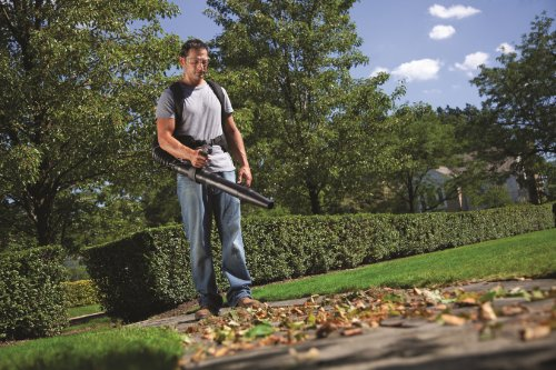 best gas powered backpack leaf blowers