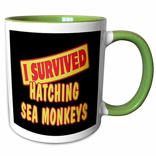 3dRose Dooni Designs Survive Sayings - I Survived Hatching Sea Monkeys Survial Pride And Humor Design - 15oz Two-Tone Green Mug (mug_117997_12)