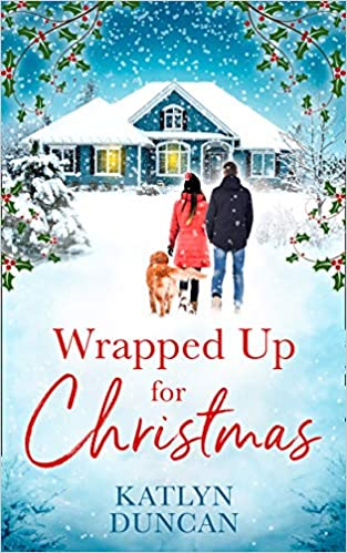Image result for wrapped up for christmas book