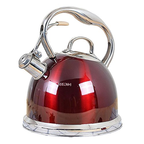 Kettle home kitchen stainless steel whistle teapot outdoor hiking camping large capacity kettle coffee pot (Color : B)