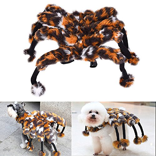 [Zaote Funny Pet Dog Spider Transfiguration Costume Pet Halloween Clothing Fancy Dress] (Dog Spider Outfit)