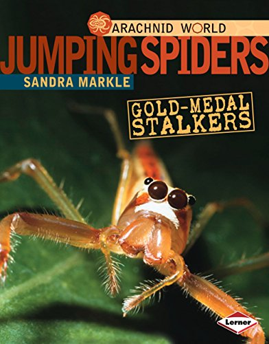 Jumping Spiders: Gold-Medal Stalkers (Arachnid World) -