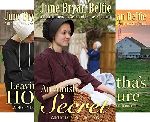 Amish Challenge (3 Book Series)