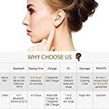 Mpow Mini Bluetooth Earbud, V4.1 Wireless Headphones, 6-Hr Playing Time Car Bluetooth Headset Invisible Headphone with Mic, Cell Phone Bluetooth Earpiece for iPhone Samsung Android (Two Charger)