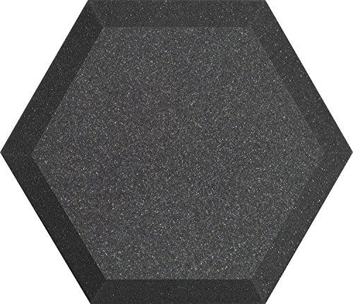 (Ultimate Acoustics UA-HX-12CH 12