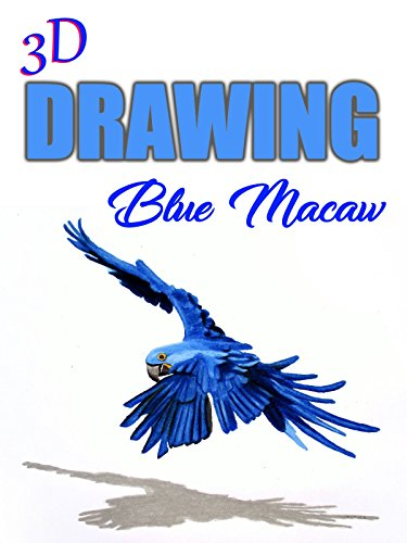 - Clip: 3D Drawing Blue Macaw