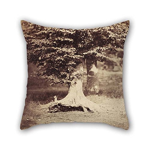 Throw Cushion Covers of Oil Painting Gustave Le Gray (French - The Beech Tree 20 X 20 Inches / 50 by 50 cm Best Fit for Home Office Teens Girls Chair Seat Bar Office Twin Sides for Christmas (Beech Set Desk)