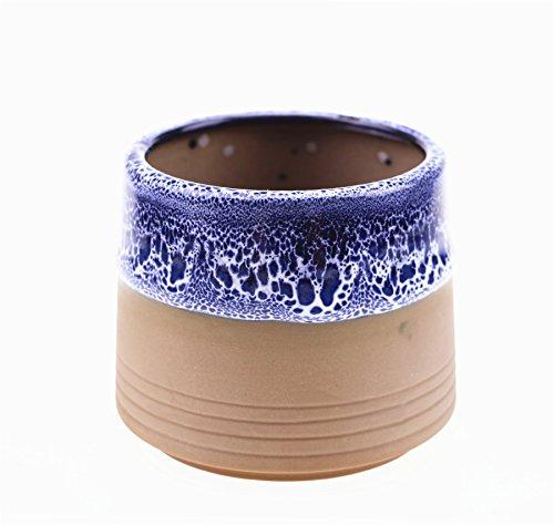 3 inch ceramic pot - 6