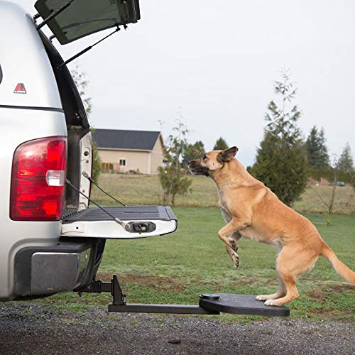 Best Dog Vehicle Ramps