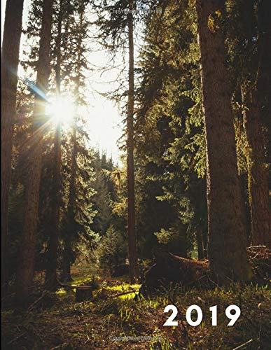 2019: Sunrise in the Natural Beautiful Forest Weekly Diary (52 Week Agenda Planner With Goal Planning, Notes Pages and a To...