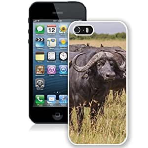 New Custom Designed Cover Case For iPhone 5S With Buffalos Animal Mobile Wallpaper (2) Phone Case
