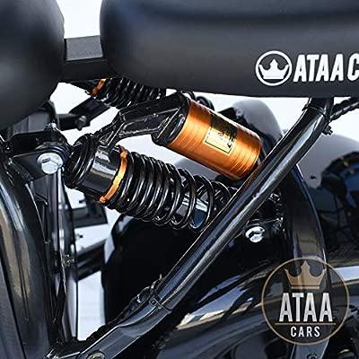 ATAA Citycoco Matriculable Doble Batería extraíble 60v ...