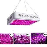 LIGHTESS 1000W Led Grow Light for Plants Lights Growing Lighting Full Specturm Double Chips UV&IR For Greenhouse Indoor Organic Veg Plant Flowering, 3816980 Review