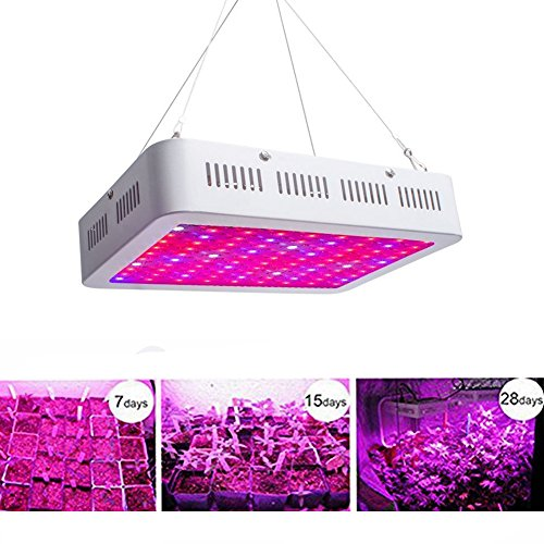 LIGHTESS 1000W Led Grow Light for Plants Lights Growing Lighting Full Specturm Double Chips UV&IR For Greenhouse Indoor Organic Veg Plant Flowering, 3816980 Review