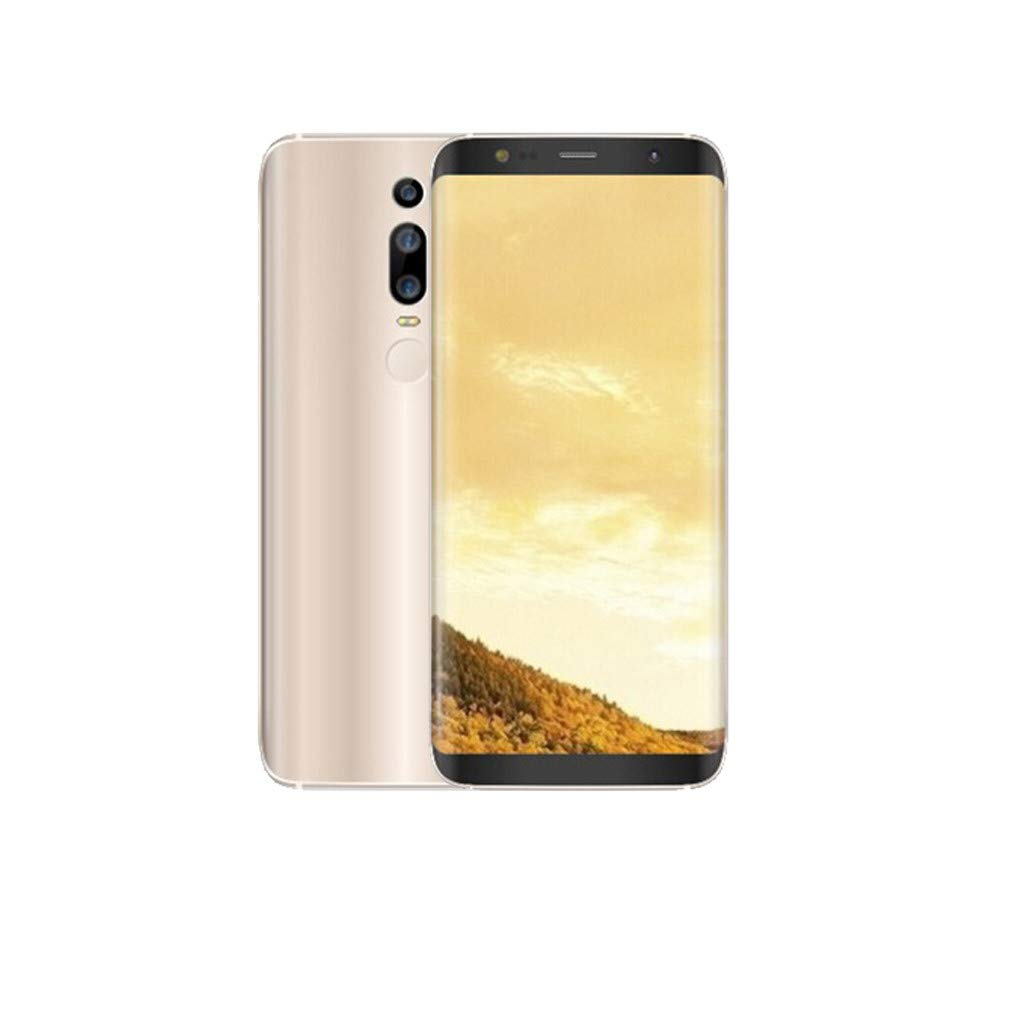 Unlocked Smartphone, 6.0 Inch 18: 9 HD Full Screen Dual HD Beauty Camera Cellphone - Face & Fingerprint Recognition Android6.0 1GB+4GB GPS 3G Call Mobile Phone (Mate RS, Gold)