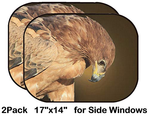 Tawny Eagle - Liili Car Sun Shade for Side Rear Window Blocks UV Ray Sunlight Heat - Protect Baby and Pet - 2 Pack Tawny Eagle Wildlife Background from Africa Bow of Greatness 28424199