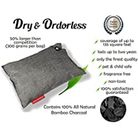 Dry & Odorless 100% Pet Safe Odor Elimimator Dog and Cat Air Freshener For Cars Closets Bathrooms All Natural Activated Moso Bamboo Charcoal 300 Gram Unscented Smell Remover (Gray)