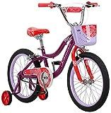 Schwinn Elm Girls Bike for Toddlers and Kids, 18-Inch Wheels, Purple