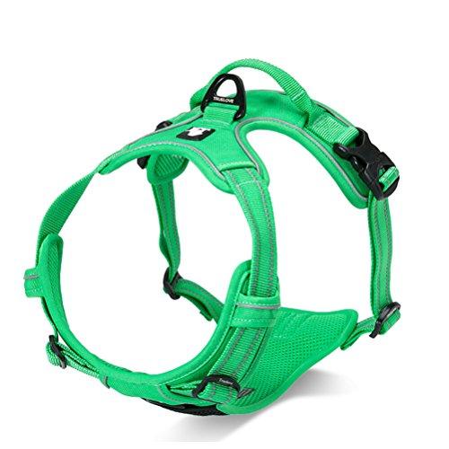SGODA Dog Harness, Green, Large