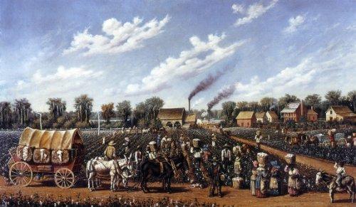 Plantation Manor (William Aiken Walker Cotton Plantation on the Mississippi - 18.1