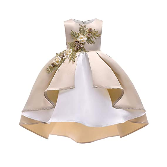 Vestido Niña, LANSKIRT Niña Floral Sin Mangas Princesa Dama de Donor Vestido del Desfile Fiesta