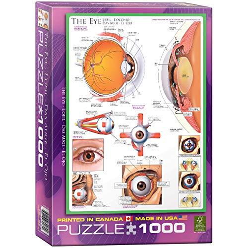 EuroGraphics Human Body (The Eye) Puzzle (1000-Piece)