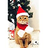 New Pets Christmas Day Ornaments Cute Dogs Hat Scarf Red Acrylic Fibres Christmas Hat Scarf Santa Suit Cat Pet Accessories