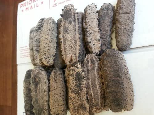ERLIN (4lb) 100% Sun Dried Sea Cucumber Badionotus (mix size)