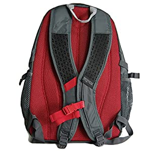 JanSport Agave Laptop Backpack (Forge Grey / Red Tape)