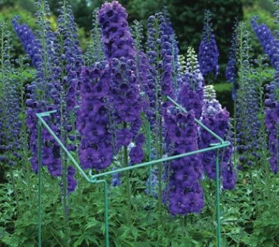 Bosmere, hellblau 76cm Bein 30cm Arm große Blume Links