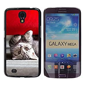 // PHONE CASE GIFT // Duro Estuche protector PC Cáscara Plástico Carcasa Funda Hard Protective Case for Samsung Galaxy Mega 6.3 / Gatito americano lindo /