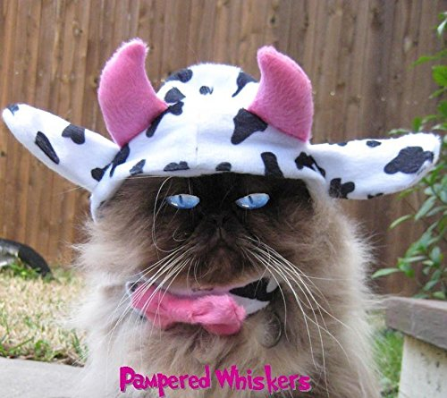 Cow Dog Halloween Costumes (Mad Cow costume for dogs and cats (small (11-14