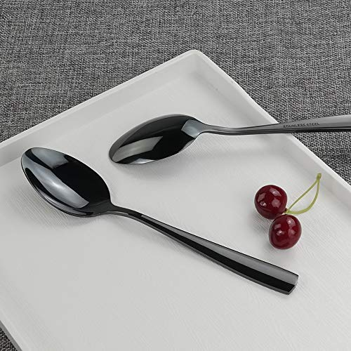 Teyyvn 16-Pack Black Stainless Steel Dinner Spoon 8.03 Inches