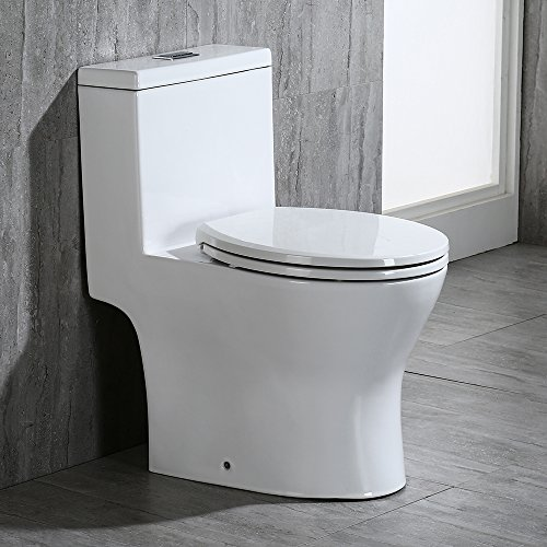 Woodbridge Modern Design, Elongated One Piece Toilet Dual Flush 1.0/1.6 GPF,with Soft Closing Seat, White, T-0032