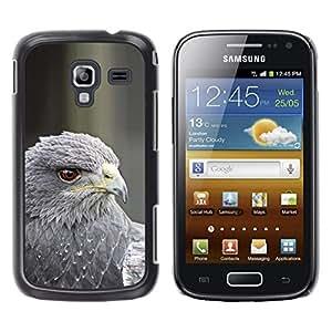 Pluma del halcón gris Pájaro de la presa Pico de ojos- Metal de aluminio y de plástico duro Caja del teléfono - Negro - Samsung Galaxy Ace 2