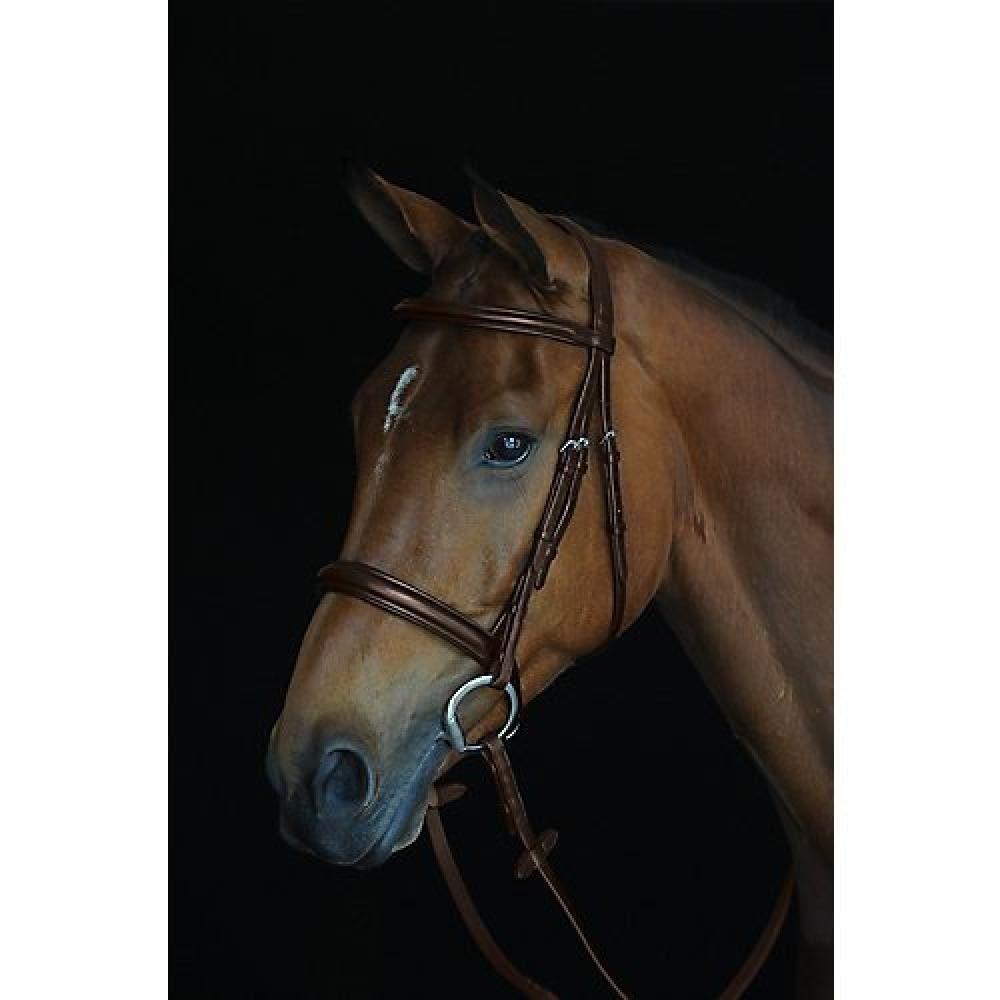 (カレッジエイト) Collegiate 馬用 コンフォートクラウン パッド入り 厚手 レザー カブソン ブライドル 頭絡 馬具 乗馬 ホースライディング ウォームブラッド ブラウン B07K5NW5WX