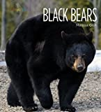 Search : Black Bears (Living Wild)