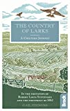 The Country of Larks: A Chiltern Journey in the footsteps of Robert Louis Stevenson and the footprint of HS2 (Bradt Travel Guide)