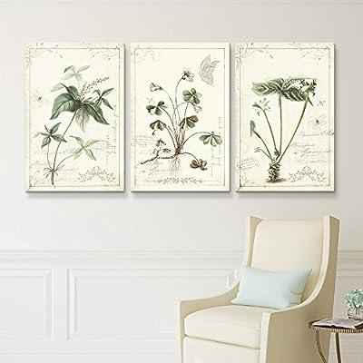 3 Panel Vintage Style Plants x 3 Panels
