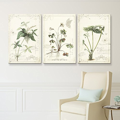 3 Panel Vintage Style Plants Gallery x 3 Panels