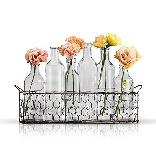 Bud Flower Vases in Chicken Wire Basket for Window-Sill Display, Decorative Storage, Party or Wedding Centerpiece - Clear Glass 6-Piece Assorted Home Decor Set from Emenest