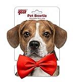 Companion Gear 70050 Holiday Pet Bow Tie, Small/Medium, Red