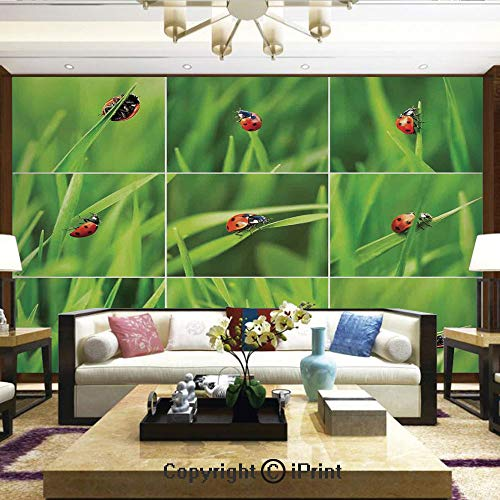 Removable Wall Mural | Self-Adhesive Large Wallpaper,Ladybug Over Fresh Grass Collection Divided Collage Vibrant Life Lawn Foliage Theme,Home Decor - 66x96 inches