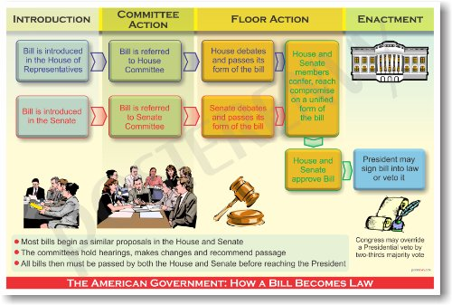 American Government: A Bill Becomes Law - Classroom Poster