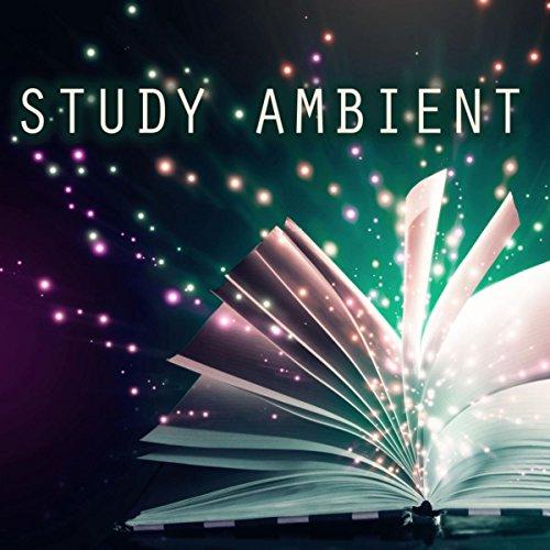 Stream 42 free Ambient + Study Music radio stations ...