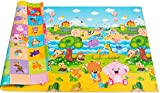 Baby Care Play Mat Foam Floor Gym - Non-Toxic Non-Slip Reversible Waterproof, Pingko and Friends, Large